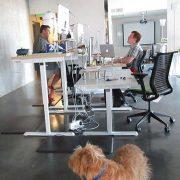Manual Standing Desk Base White MultiTable 5