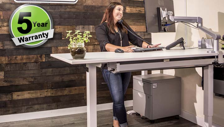 Standing Desk Adjustable Electric Multitable