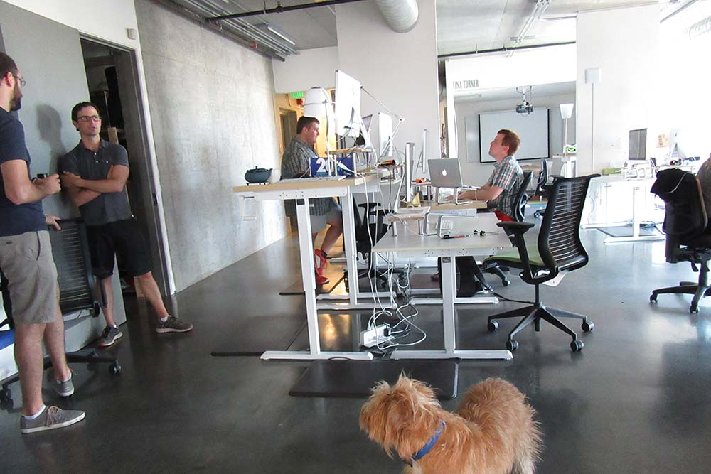 Standing Desk Adjustable Height Desk MultiTable Gallery 55